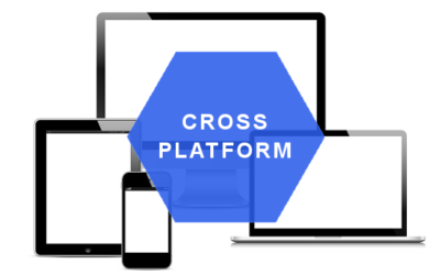 Winning the Mobile Explosion with Cross-Platform Solutions